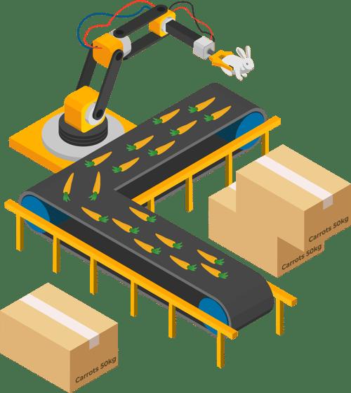 carrot conveyor belt
